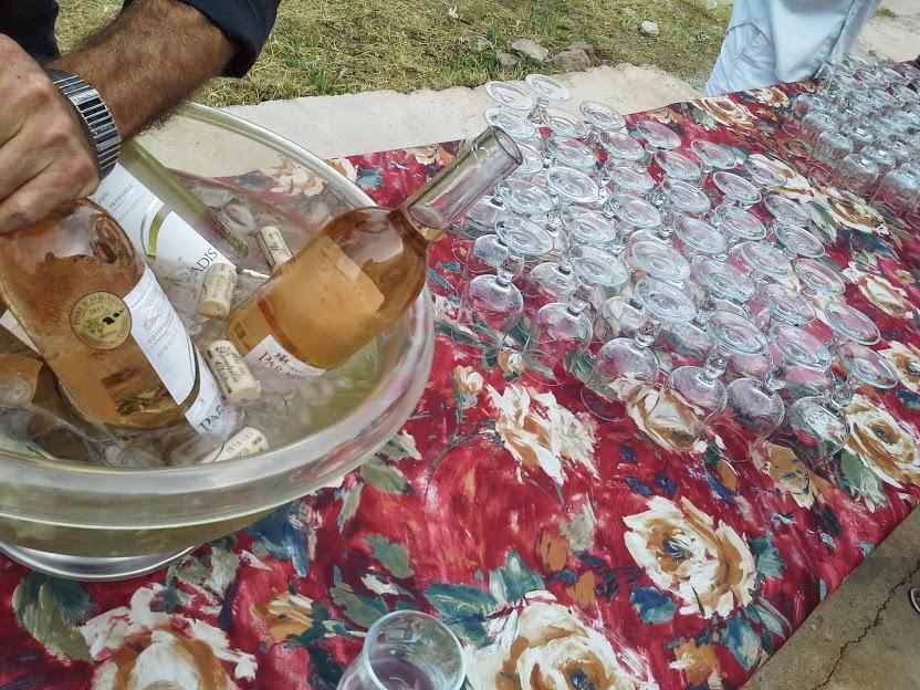 Dégustations de Rosé AOC Cotes de Provence au domaine